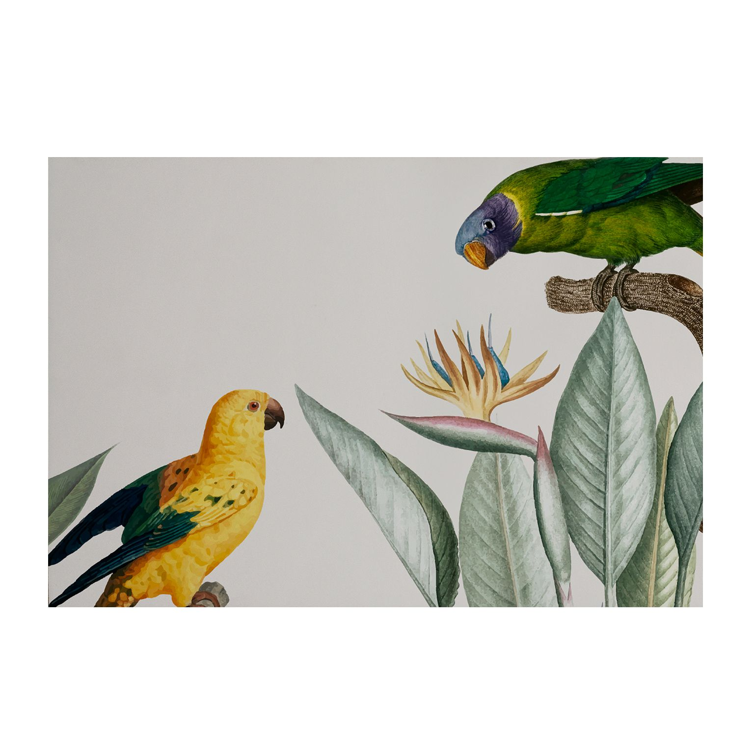 Placa Decorativa MDF Fauna